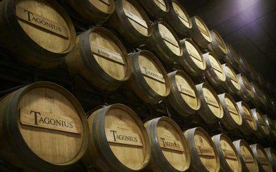 Cata de vinos en Ponzano
